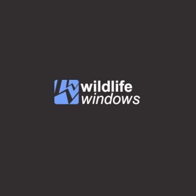Wildlife Windows